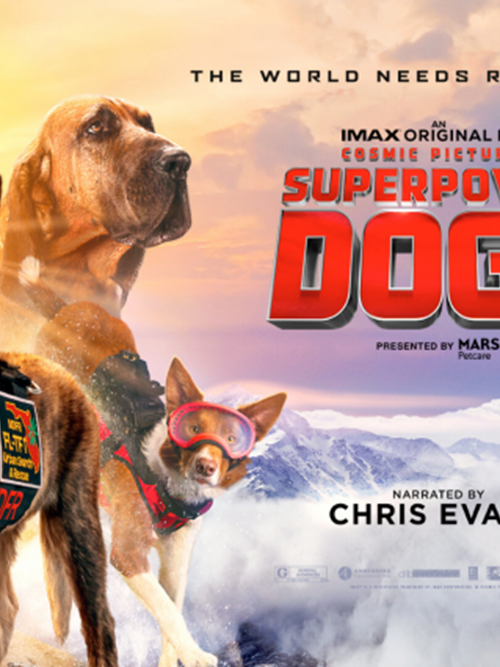 Superpower Dogs Giant Film