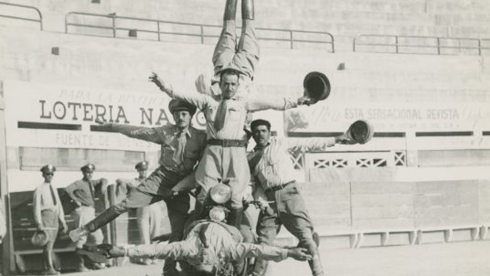 Daredevils: A Century of Spine-Tingling Spectacles