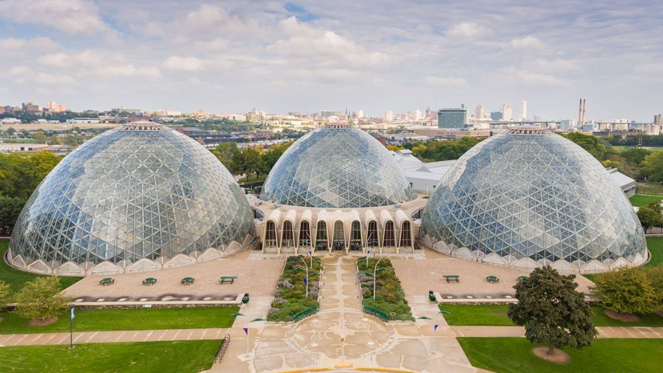 The Care and Keeping of a Tropical Dome
